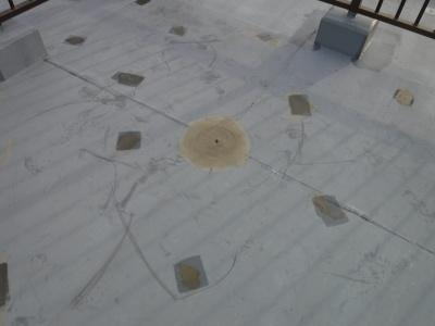 川崎市多摩区Gビル改修工事/屋上防水下地処理・プライマー塗布