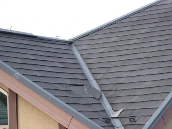 早めの屋根のお手入れは必要と思われます。